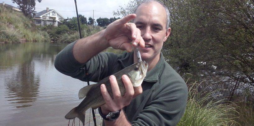 Pescar black bass donde menos te lo esperas