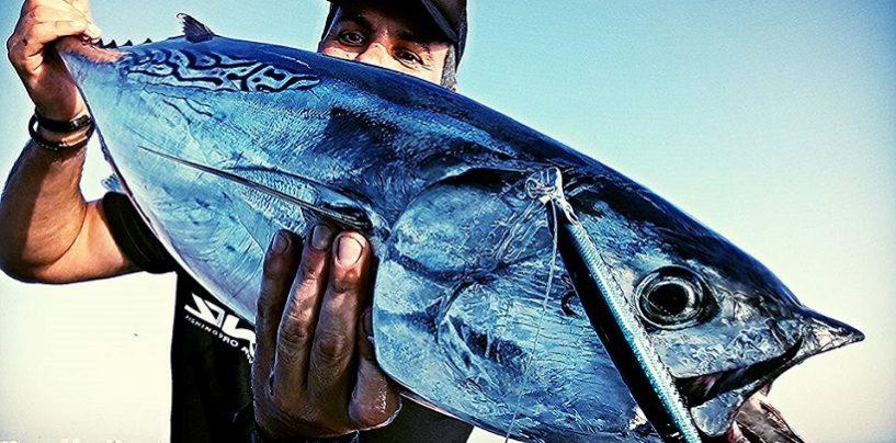 7 señuelos para el verano ideales para pescar en el mar