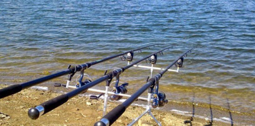 Pezcador al día, principales noticias de pesca (Septiembre 2018, 1)