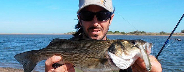El montaje doble zulú. El arma secreta de los pescadores profesionales del bass