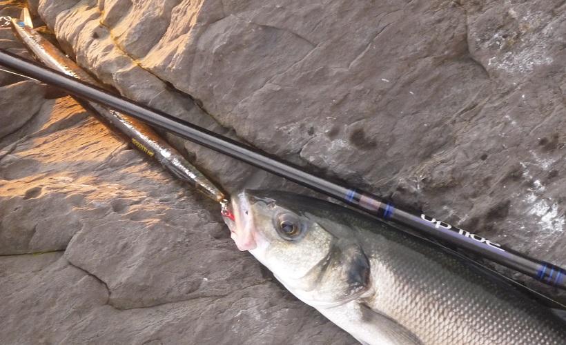 los señuelos castigados que pescan