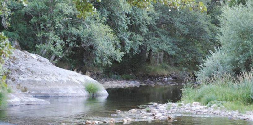 Los mejores ríos trucheros de España (VIII): El río Omaña