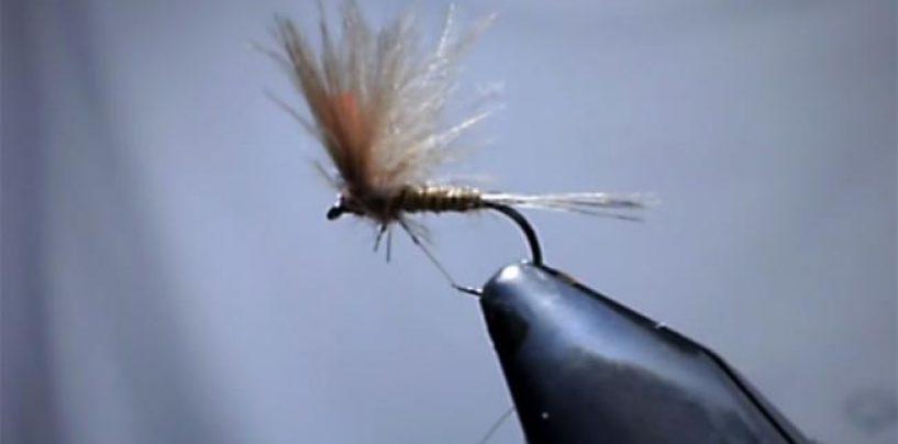 Vídeo de pesca: Montando una mosca de mayo genérica con CDC