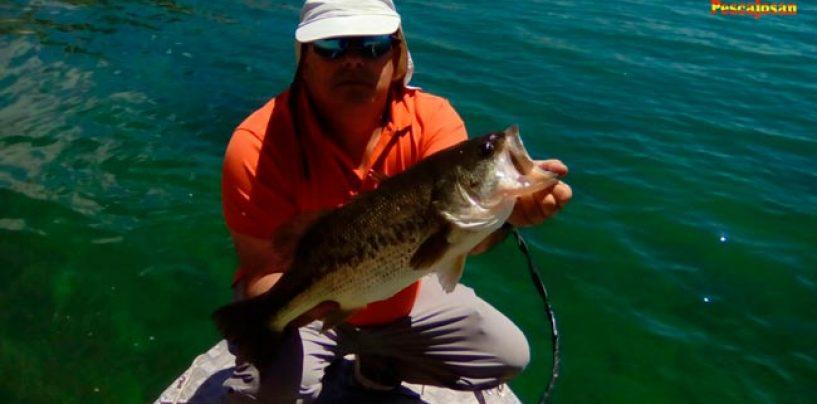 Historia de pescadores: Probablemente el mejor pescador de castilla… y más allá