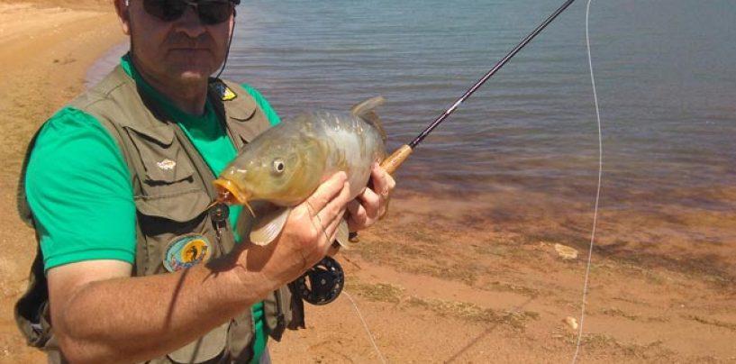 ¿Es recomendable una caña del nº 5 para pescar carpas a mosca?