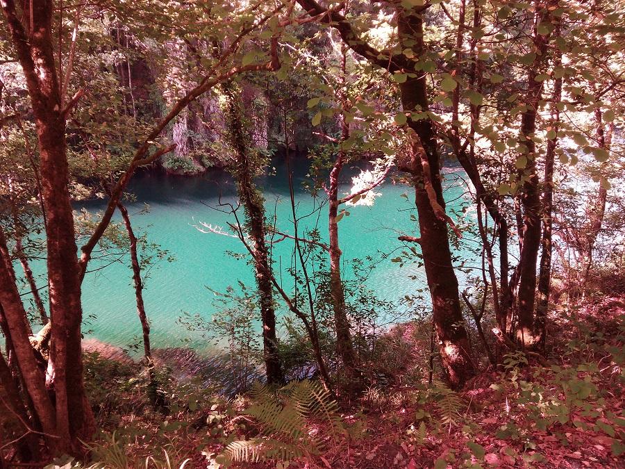 Coto Ombre en el rio Eume