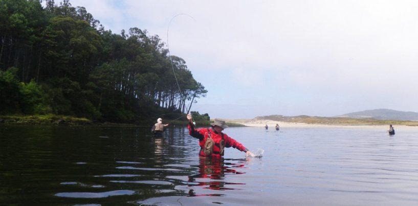 Ria de Lires, territorio mújol para al pesca a mosca