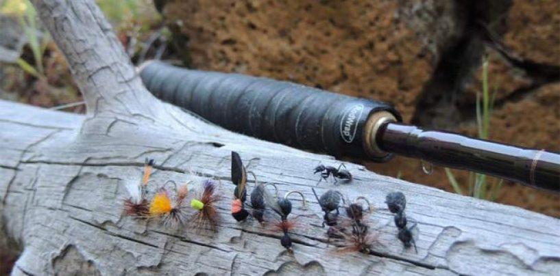 Montaje de hormiga alada para barbo