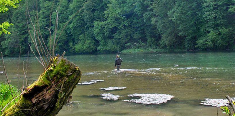Destinos de Pesca: El río San, el paraíso polaco de la pesca a mosca