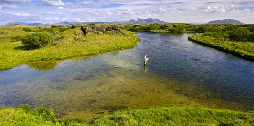 Destinos de pesca: Río Laxa Adaldal, Islandia, el paraíso de la trucha