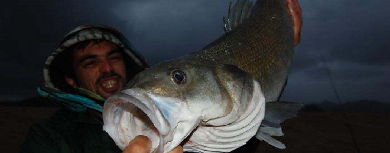 El clima en la pesca y su influencia