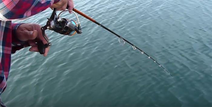 pesca de barbos con cucharilla ondulante