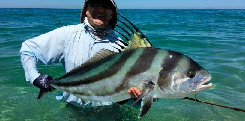 La pesca del Roosterfish en las costas del Pacífico